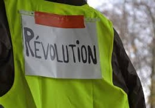 yellow vest revolution free